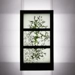 transparent lcd displays