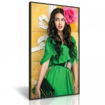 84 inch high bright dynascan Dynascan Super High Brightness LCDs Premium Ultra High Brightness LCDs
