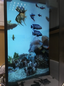 Introducing a New Concept in Transparent Display Integration, 'ClearVue 3DP'