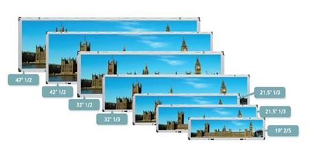 panel only Stretched (Cut) TFT Panel Kit Displays