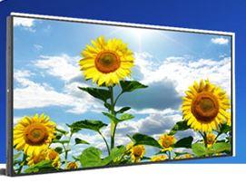 High Resolution 29 Inch LG Panel with 600nits Brightness