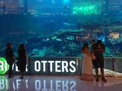 tglass-aquarium