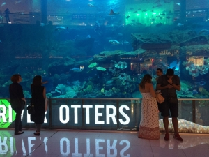 Transparent LED Displays Extend Advertising Space