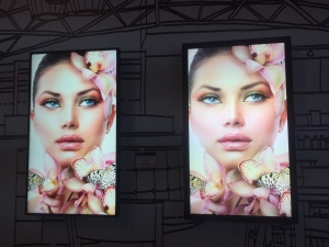 Enhance your Print Displays with Dynascan