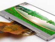 2.9 inch CDS029GQ03NS