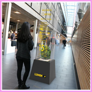 Read more about the article Premium Transparent Displays and Displays in Window Glass