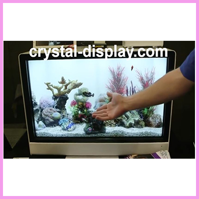 Interactive Transparent Displays in Action