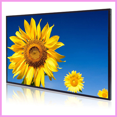 CDS high brightness sunflower