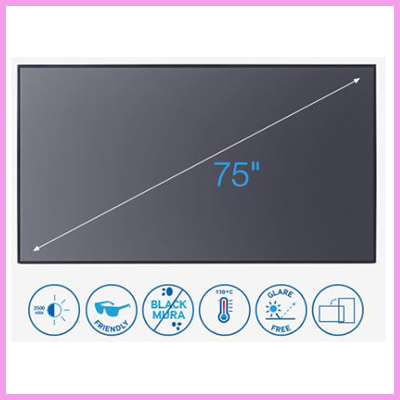 75″ FHD 2,500 nit Professional Outdoor Panel