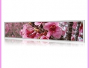 stretched lcd display pink