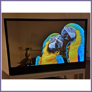 Astounding Plug and Play Transparent OLED Solution